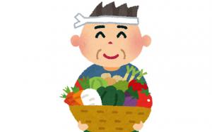 野菜・果物の5000円返礼品おすすめ3選!