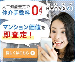 HAYAGAI ハヤガイ